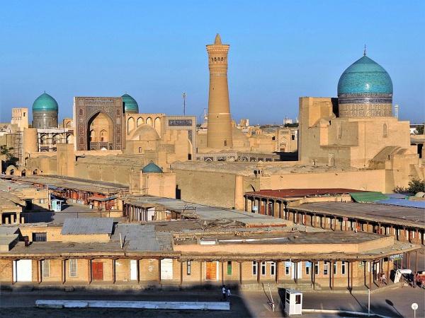Шагая по публичным библиотекам мусульманского мира