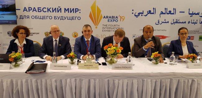 Фарит Мухаметшин выступил на  заседании Российско-Египетского Делового Совета